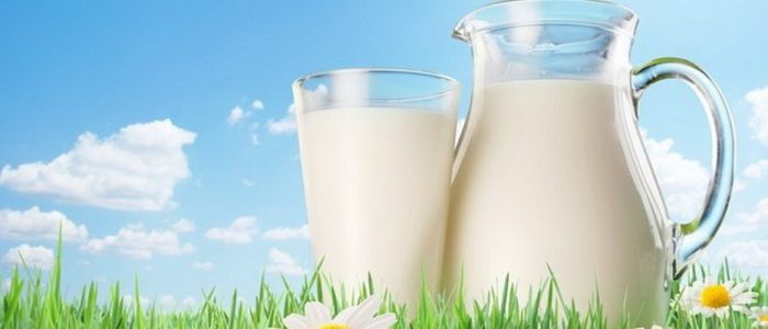 Молоко для печени вред и польза