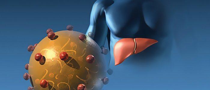 Хронические гепатиты виды